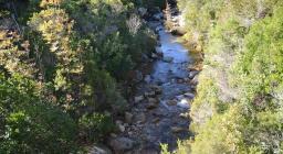 Rio Sa Mela ambiente