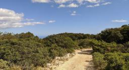 Vedetta Galtellì arrivando dal sentiero che parte dal crocifisso (foto A.Saba)