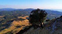 Panorama da Vedetta Monte Gonare (foto Francesca Orrù) 2
