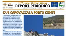 newsletter progetto Grifone (luglio 2019)
