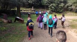 3.Scuola nel bosco 2021-04-07