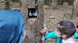Scuola nel bosco 2021-04-07.