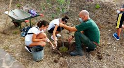 messa a dimora di alberi a Santadi, 09.2021 (3)