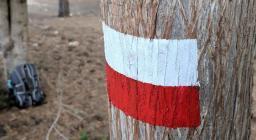 bandierina segnavia lungo un sentiero