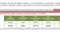 Dati gestione territorio, Agenzia Forestas 2020