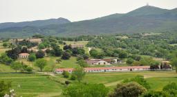 Foresta Burgos e monte Rasu