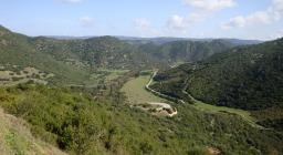 Macchia-foresta della valle del Flumendosa
