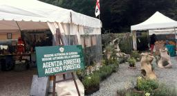 info-point Agenzia Forestas