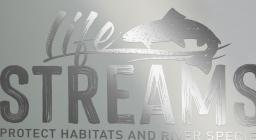 logo life streams