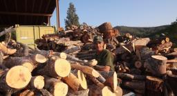 produzione e vendita legna da tagli forestasli.jpg