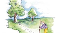 quaderno del bosco insegnanti scuola media schede lavoro
