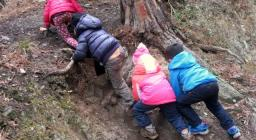 Scuola nel bosco: attività sul campo