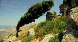 Villanova Monteleone Monte Mannu