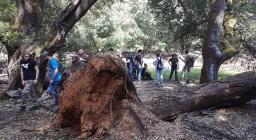 Studenti di Palermo in visita alle foreste sarde 2