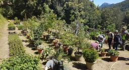 Studenti di Palermo in visita alle foreste sarde - vivaio montes