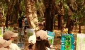 scolaresca nel bosco