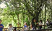 Equilibri Naturali: bambini nel bosco