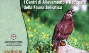 Brochure sui Centri di Allevamento e Recupero della Fauna Selvatica
