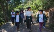 Bambini in foresta, attività di Educazione Ambientale