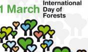 Giornata mondiale delle foreste, 21 marzo 2015