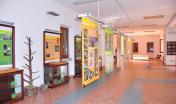 Museo della foresta demaniale di Montes