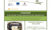 LIVINGAGRO -Newsletter gennaio 2020