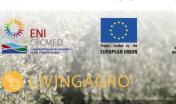 LivingAgro Logos