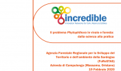 seminario Phytophthora 19.02.19
