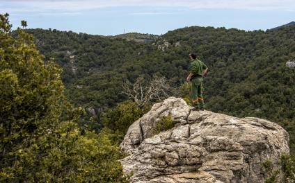 Orizzonti Forestali (paesaggio, foto di C.Mascia)