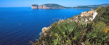 Area marina protetta Capo Caccia - Isola Piana