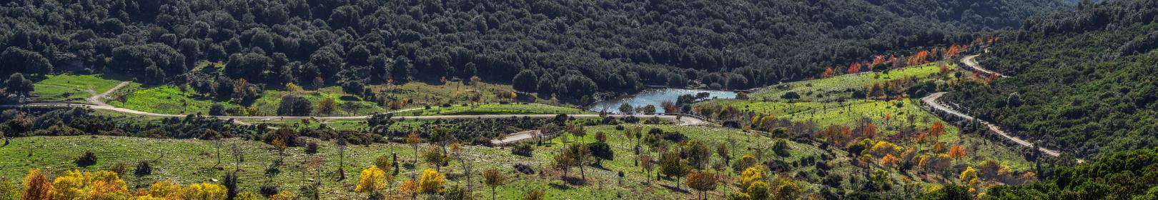 Genna Orruali ottobre 2020 panoramica (foto Cristian Mascia)